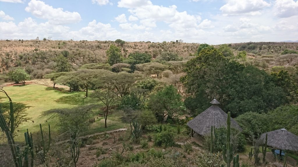Maasai Lodge area